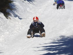 A boy on sledge is rushing down